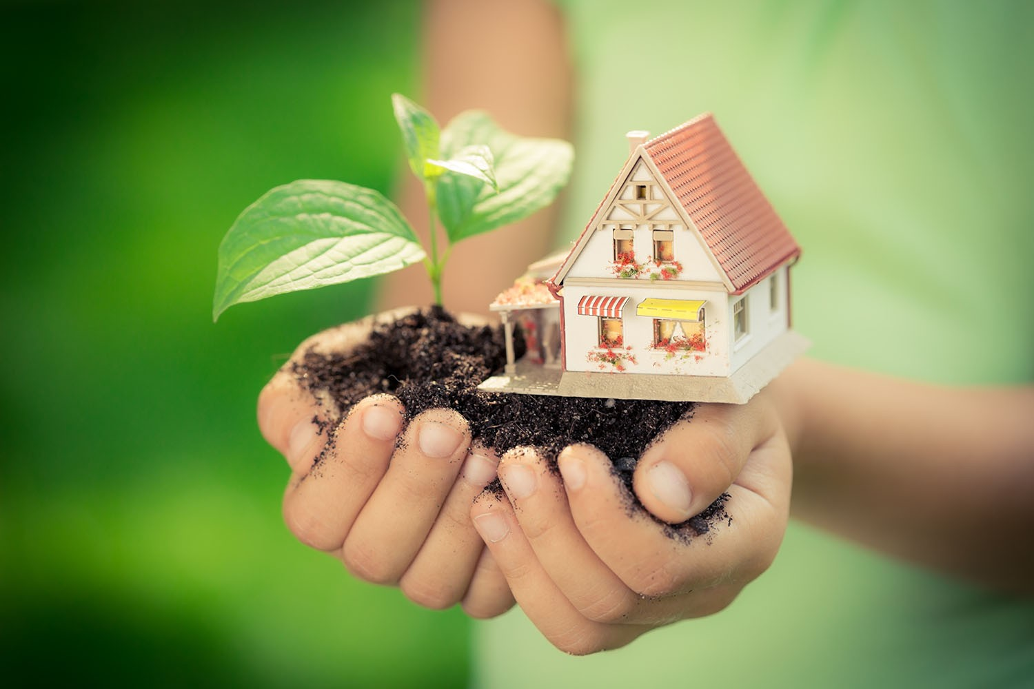 Creating an Eco-Friendly Home This Summer
